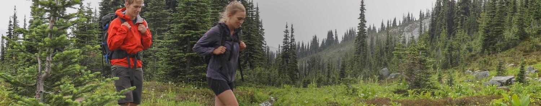 pareja caminando por el bosque: protegiendo el medio ambiente, protegiendo nuestro mundo natural